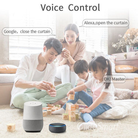 Alexa and google home workable