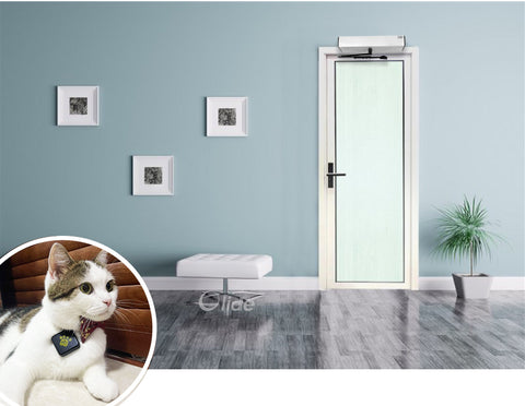 smart pet collar sensor for automatic door system