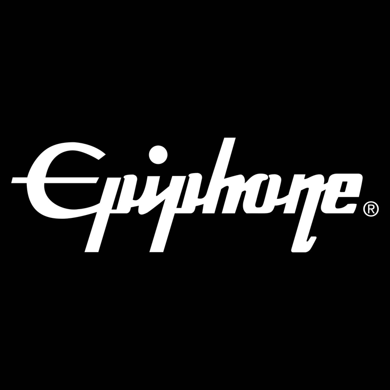 Epiphone Amp Parts