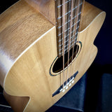 Tanglewood TWR AB, ROADSTER ELECTRO-ACOUSTIC BASS GUITAR - British Audio