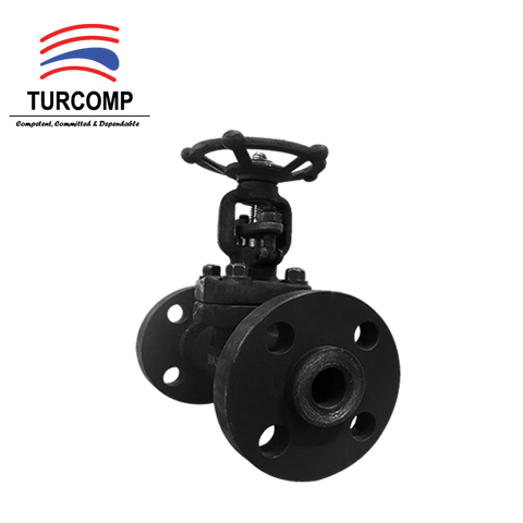 "WAGI Gate Valve 1"" CL300 Carbon Steel A105, Bolted Bonnet, OS&Y, RF-Supplier Wagi Gate Valve-Malaysia-Turcomp Online Store"