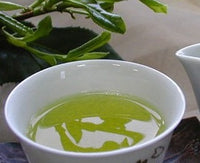 Sencha Japanese green tea cup