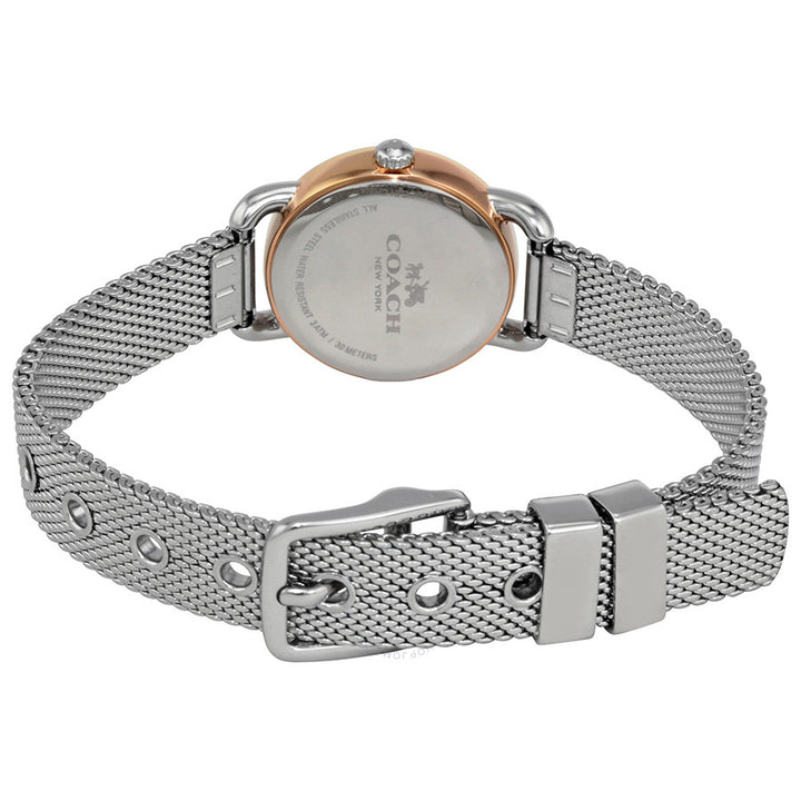 Coach Delancey Silver Dial Mesh Bracelet Ladies Watch 14502282