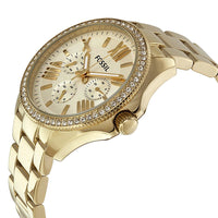 Fossil Cecile Multifunction Champagne Dial Watch AM4482