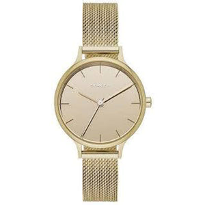 Skagen Anita Champagne Dial Stainless Steel Mesh Ladies Watch SKW1075