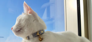 Stylish blue polka dot cotton/linen fabric breakaway safety cat collar with brass bell by Noggins & Binkles