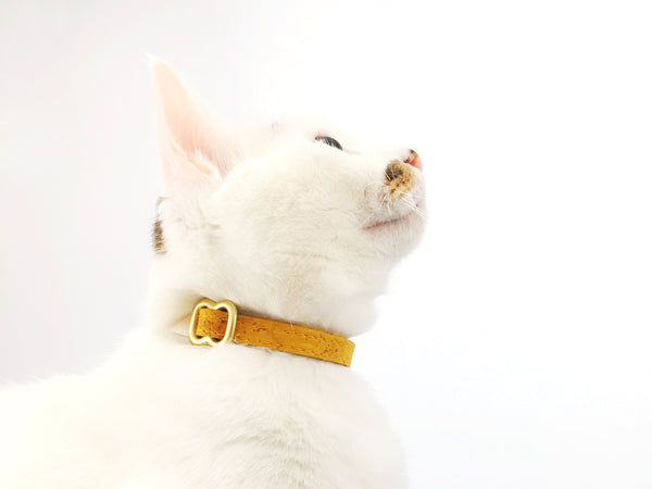 cat wearing mustard yellow cat collar in vegan cork leather with bell