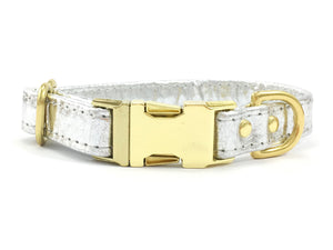 Piñatex Dog Collar With Brass Buckle - Silver
