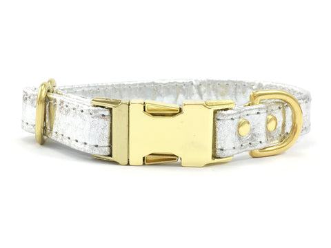 Silver Dog Collar With Brass Buckle in Piñatex Vegan Leather