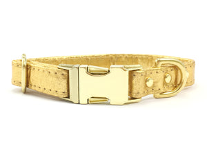 Gold Dog Collar in Piñatex Vegan Leather With Brass Buckle