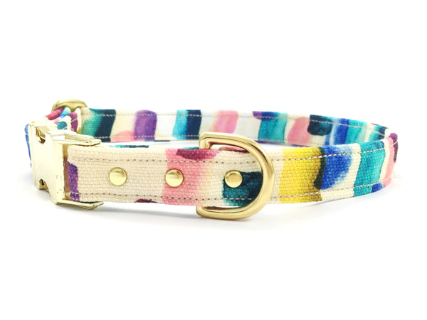 Dog collar in a yellow, pink, green, blue, turquoise and purple patterned luxury cotton with brass buckle and hardware, available in extra small, small, medium and large
