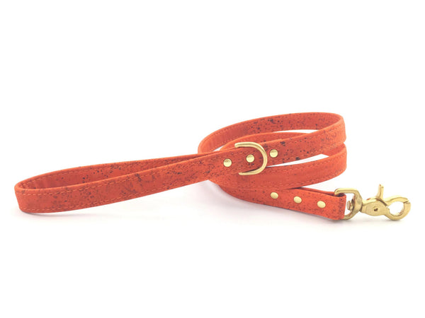Dog lead/leash in stylish burnt orange vegan cork 'leather' with solid brass hardware, by Noggins & Binkles, matching collar available