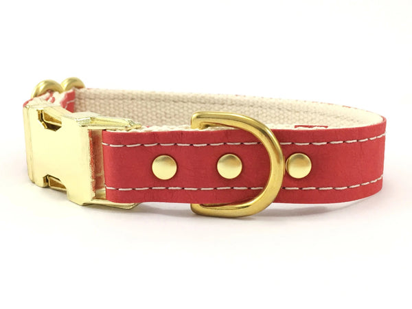 Red dog collar in vegan leather with luxury brass buckle, available in extra small to large