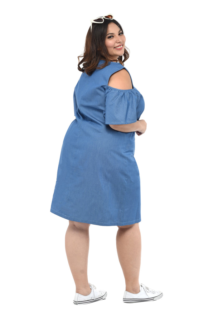 Chambray Shift Dress (FDS 021)