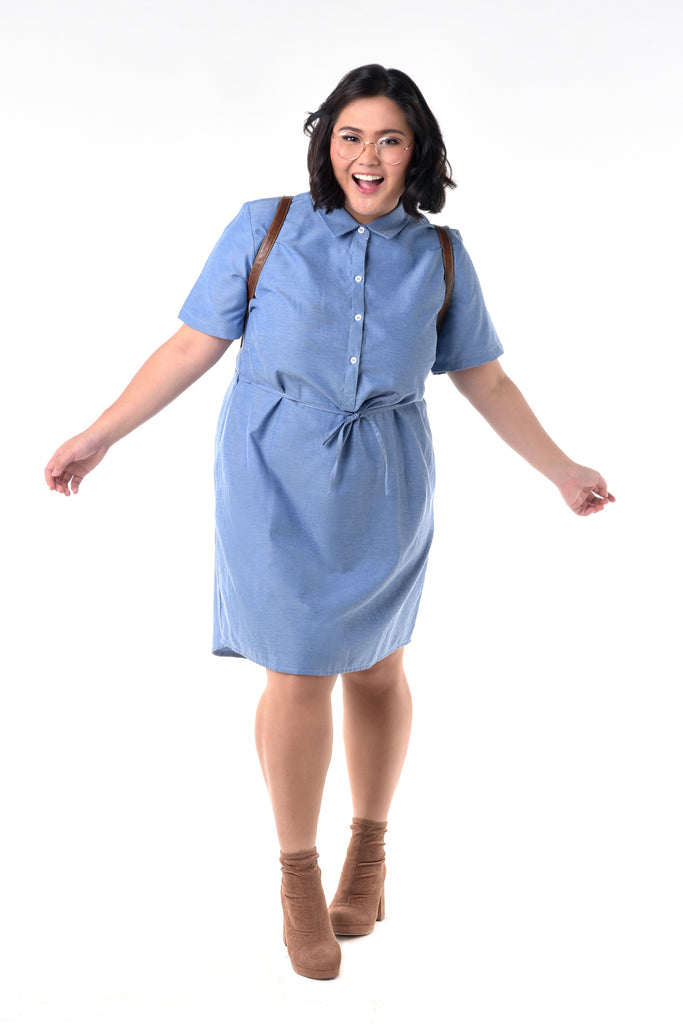 Chambray Button-Down Dress (FDS 004)