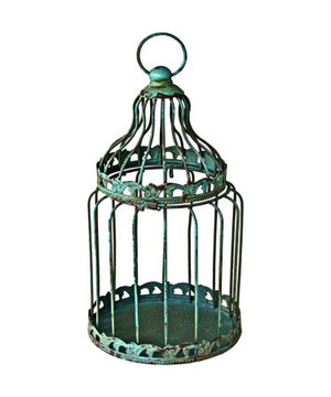 Metal Bird Cage Plant Holder