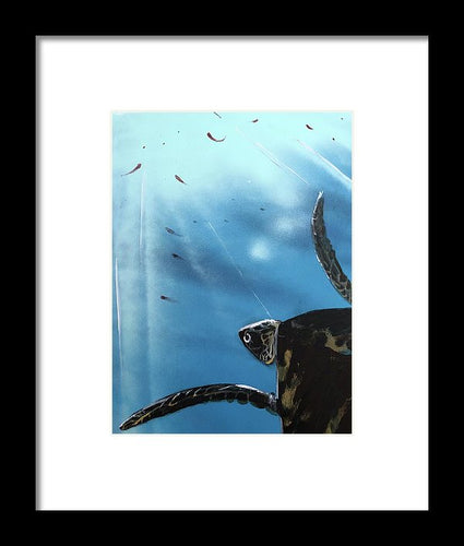 Turtle Food - Framed Print