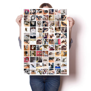 20x30 Poster with 77 photos