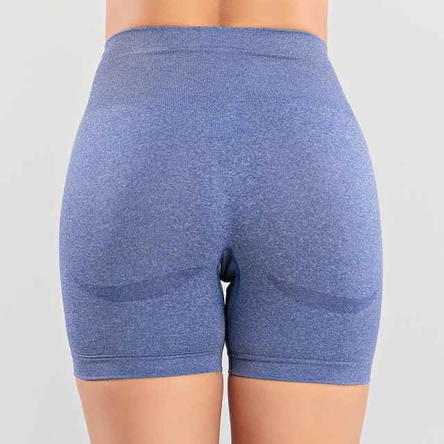 Quick Dry Workout Running Shorts