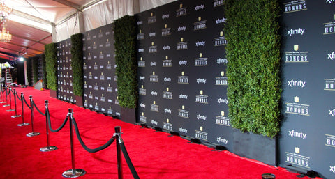 Custom printed step and repeat banners at red carpet event.
