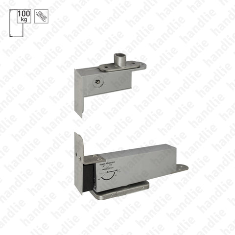 D.1997 - Pivot with hydraulic spring - Stainless Steel