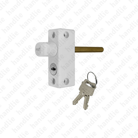 FX.11545 - Security bolt