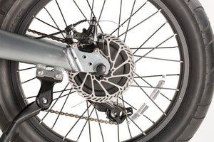 "fat tire electric bike--20"" Spoke wheel"