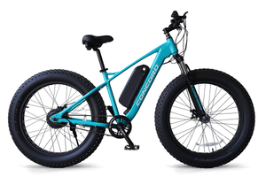 Fat Tire e-Bike