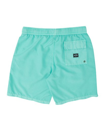 All Day Overdye Layback Boardshort (Aqua)