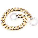 gold and silver dog chain collar