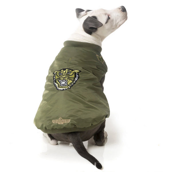 large dog jackets