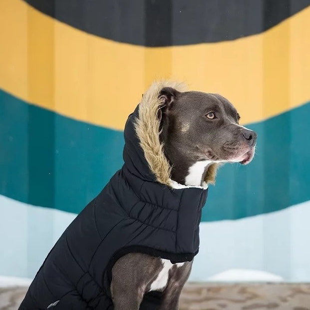 Black Parka Dog Coat