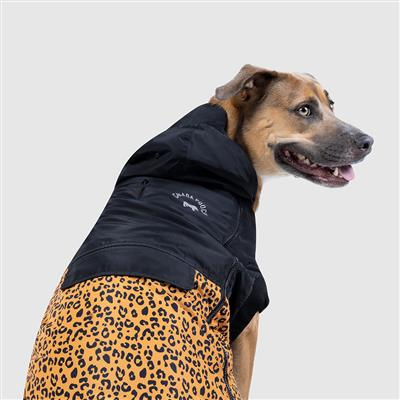 dog coat with hood