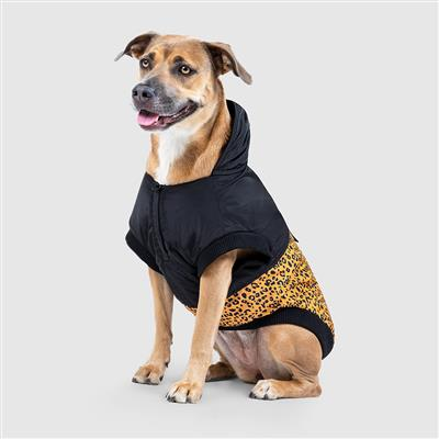 leopard black dog jacket