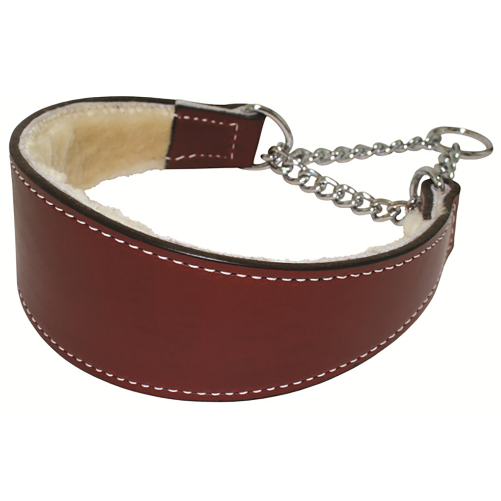 martingale dog collar with chain