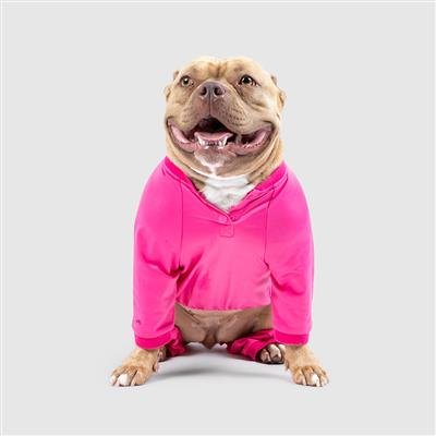 hot pink dog tracksuit