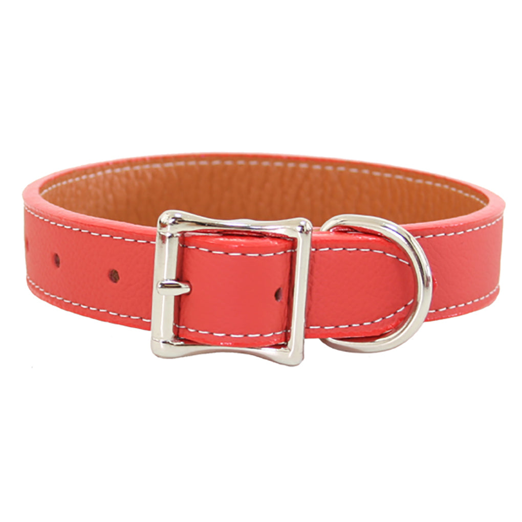 orange leather dog collars