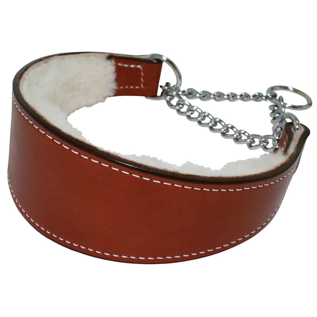 leather martingale dog collar