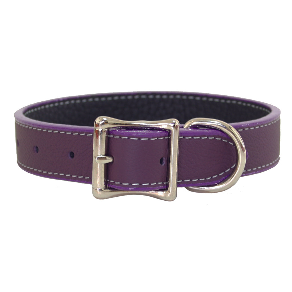 purple leather dog collar