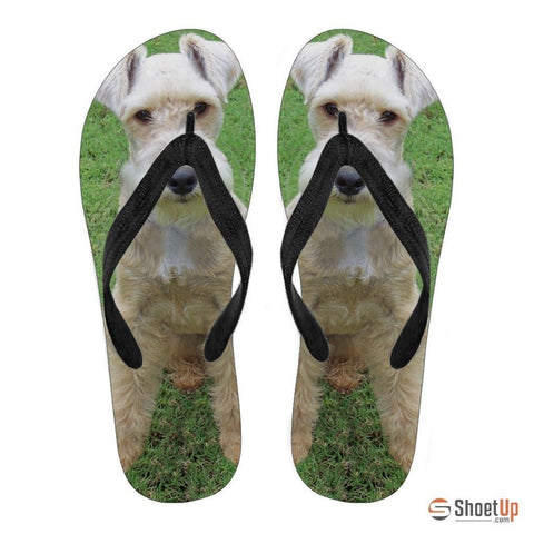Lakeland Terrier Flip Flops For Men-Free Shipping