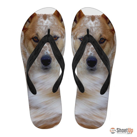 Australian Cattle Print Flip Flops For Men- Free Shipping