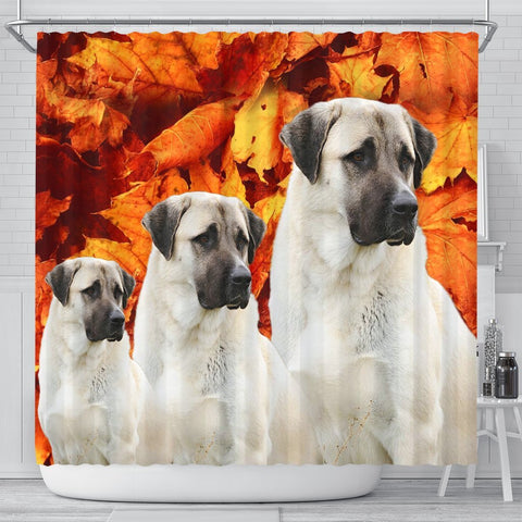 Cute Anatolian Shepherd Print Shower Curtains-Free Shipping