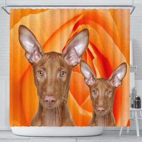Pharaoh Hound Dog Print Shower Curtains-Free Shipping
