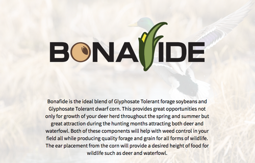 Bonafide Blend - Dwarf Corn & Soybeans - SOLD OUT