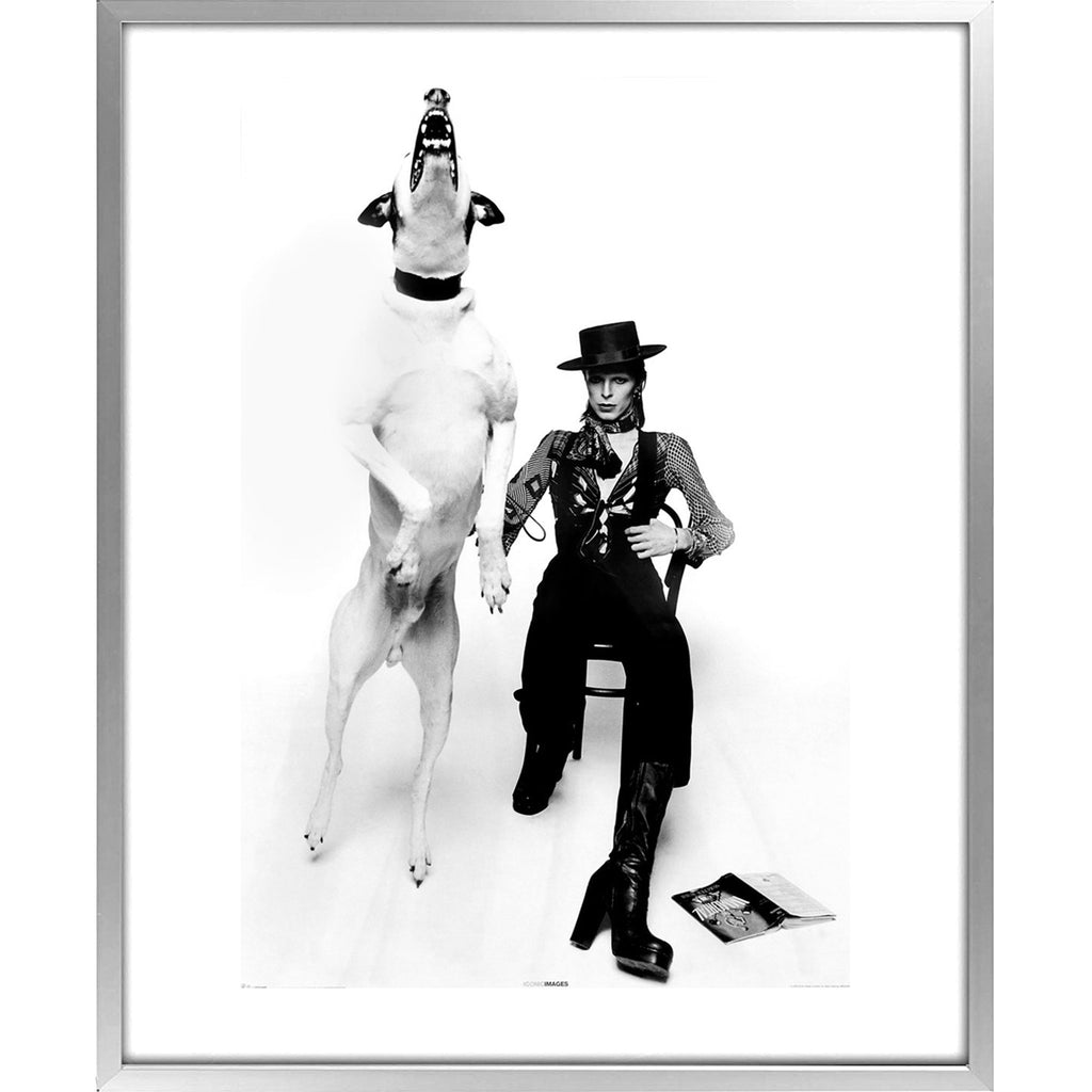 Bild | David Bowie - Diamond Dogs