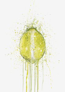 Lime Fruit Wall Art Print-We Love Prints