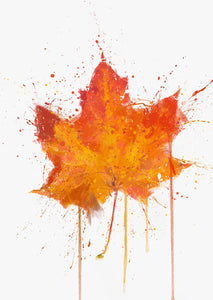 Maple Leaf Wall Art Print