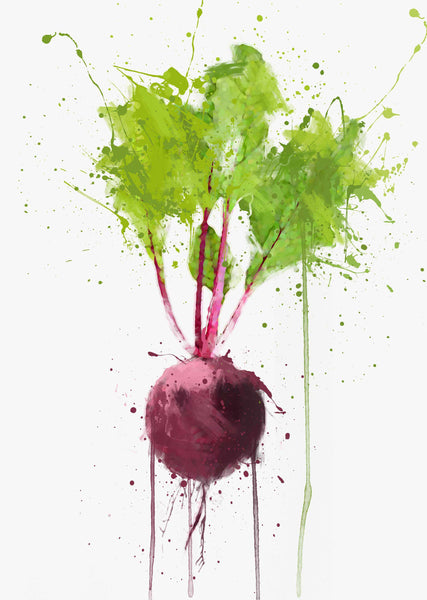 Beetroot Vegetable Wall Art Print