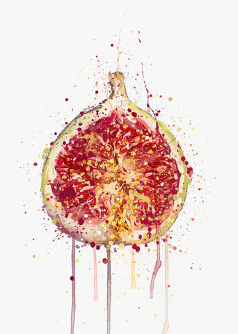 Fig Fruit Wall Art Print