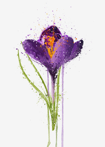 Flower Wall Art Print 'Crocus'